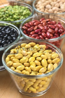 Canary Beans and Other Legumes