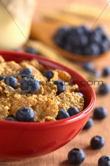Wholewheat Flakes with Fresh Blueberries