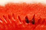 watermelon close up background