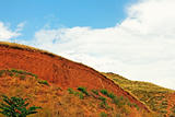Landslide on the clay hill