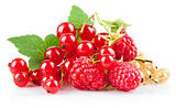 set fresh berries with green leaf