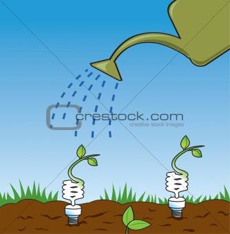Growing Green Ideas