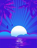 Summer tropical Night