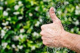 Hands under falling water