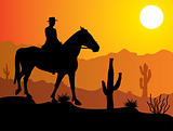 man on the horse in desert