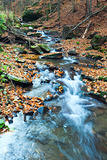 Rocky Autumn Stream