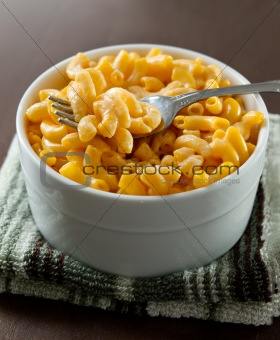 close up photo of macaroni and cheese with selective focus on a fork