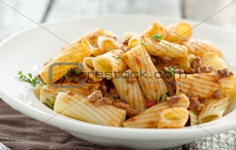 rigatoni pasta with a tomato beef sauce