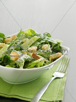 Caesar salad with coypspace