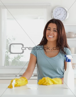Pretty woman doing the housework