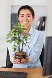 Gorgeous woman holding a plant while looking at the camera