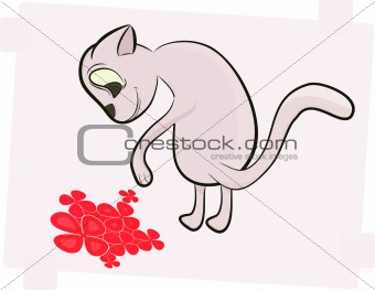 Cat and red flower