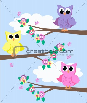 three cute owls