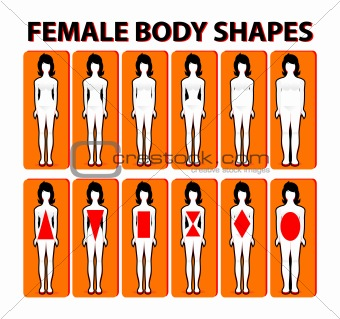 28b723f7ef71d Image 4061683  Female body shape or figure types. Woman collection ...