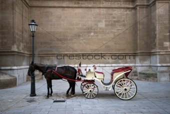 Cathedral and carriage