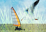 Land sailing seagull