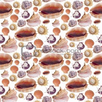 Sea Shell Seamless Background Pattern
