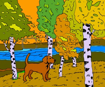 autumn sunny landscape with forest river and dog - vector