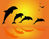 silhouettes of a group of dolphins