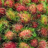Ripe fruits - rambutan