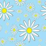 Seamless illustration of flowers daisies on a blue background