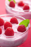dessert with fresh raspberries
