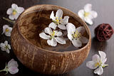 white flowers in bowl