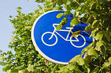 bicycle track sign and tree leafs
