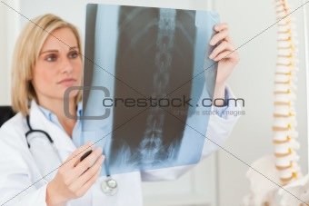 Sad looking doctor looking at x-ray
