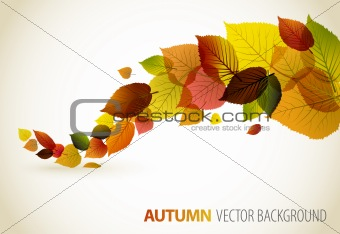 Fall abstract floral background