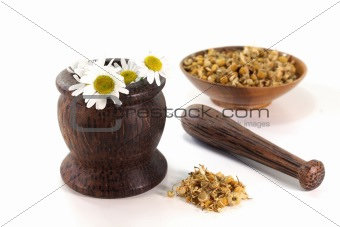 chamomile flowers with mortar
