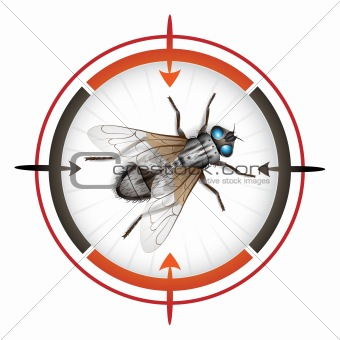 Target with housefly