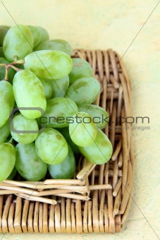 branch of green grapes on a wooden background