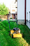 mower on the green lawn