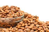 many cedar nuts