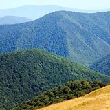 summer misty mountain landscape