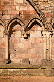 Holyrood Abbey With Gothic Arches