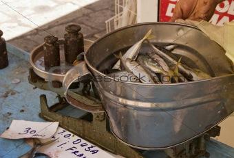 Sardines At Fish Market
