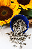 Sunflower Seeds Spilling From a Blue Bowl