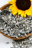 Sunflower Seeds in the Hull