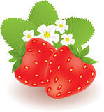 strawberries with leaves and flowers