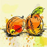 Stylized apricot on grunge background