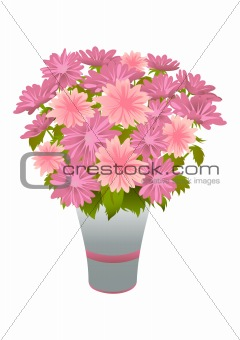Bouquet of pink asters in blue vase