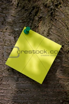 Post-it Note on a Tree