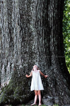 Child Standing Under a Large Tree