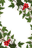 Holly and Ivy Abstract Frame