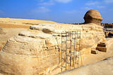 famous egypt sphinx in Giza from behind