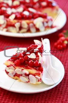 Cheesecake with redcurrant