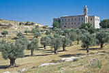 St. Elias monastery of Jerusalem in typical biblical landscape 