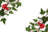 Holly and Ivy Abstract Border
